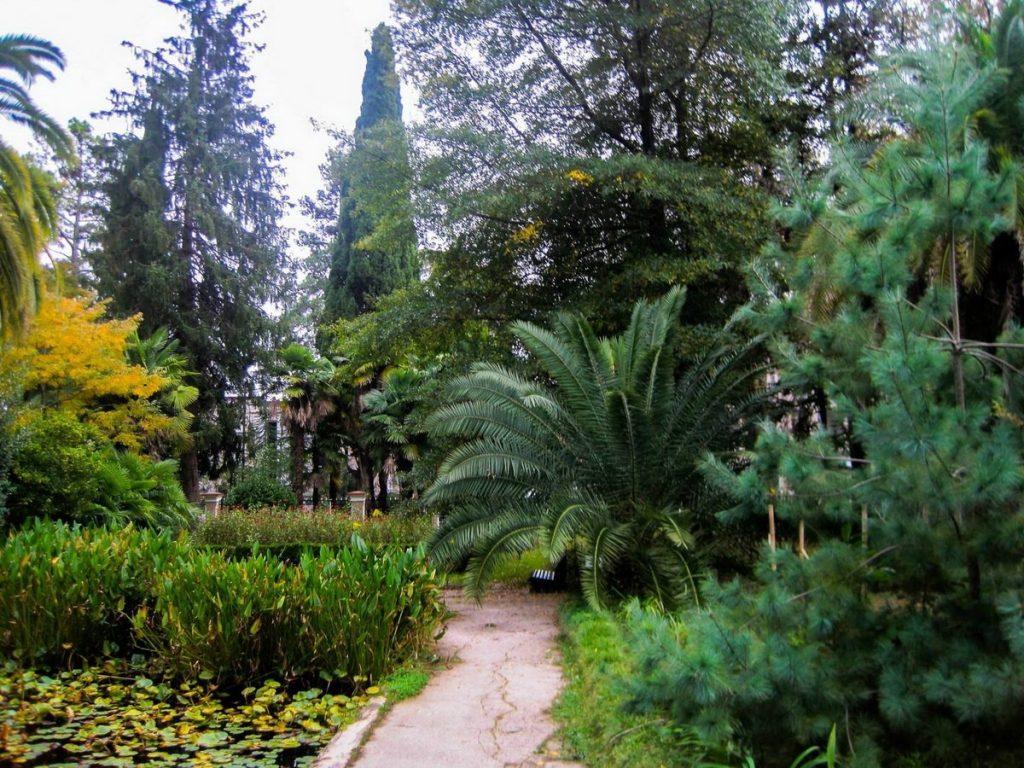 Абхазия Сухум Ботанический сад