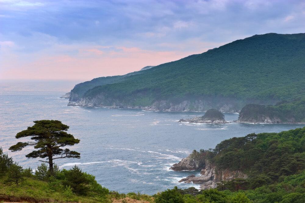 Японское море Дальневосточный морской заповедник