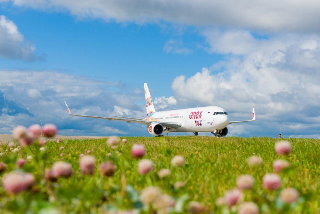 Самолет поле небо взлет посадка