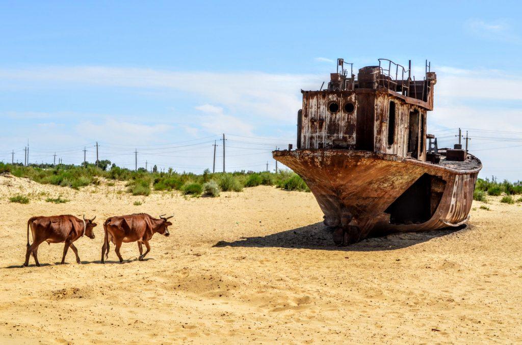 Аральское море высохло Узбекистан