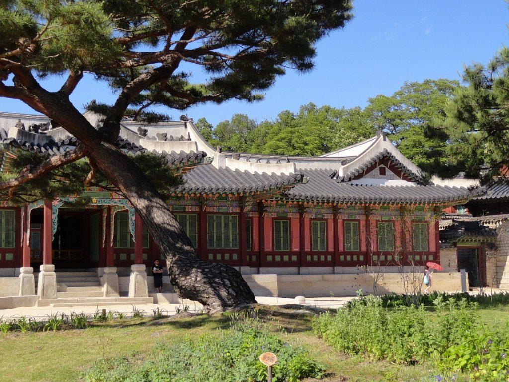 Дворец Чхангёнгун Корея экскурсия