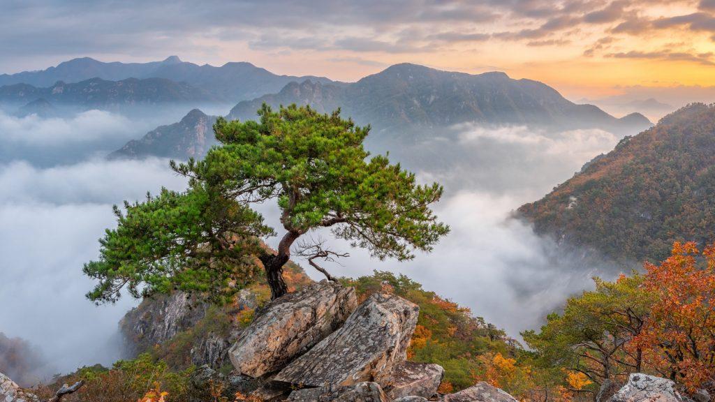 Самые красивые фото Кореи Пукхансан