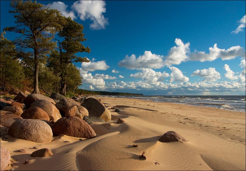 Купаться в Балтийском море сезон температура воды