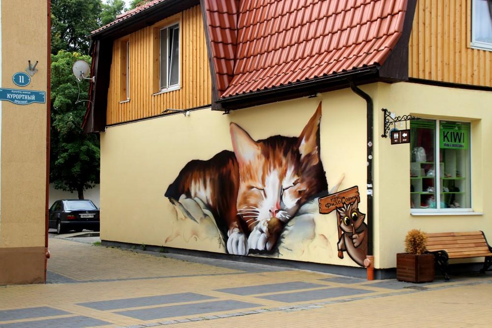 Зеленоградск город кошек курорт море