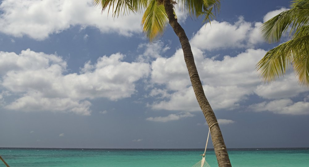 Cheap flights from New York to Aruba