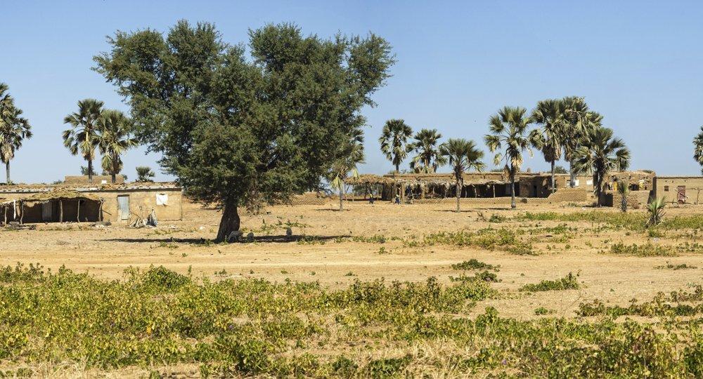 авиабилеты в Нджамену дешево
