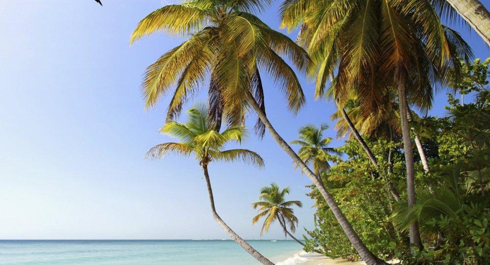 flights to Tobago